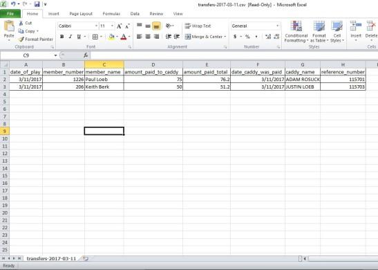 CV Report CSV